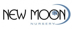 New Moon Nursery