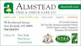 Corporate business card directory metro hort group almstead tree shrub care co reheart Images