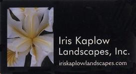 IrisKaplow2
