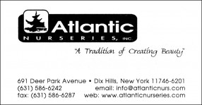 atlanticNursery
